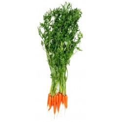 mini-lenteworteltjes