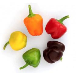 Minibell paprika