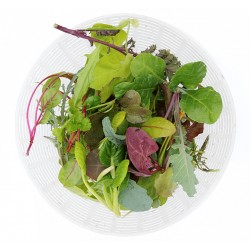 zomer-salade